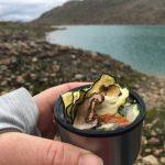Gedroogde groente op de berg - lunch
